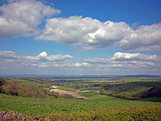 Dorset Rolling Countryside - Blackmore Vale