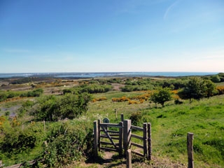 purbeck countryside